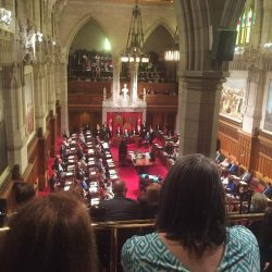 IAM witness to history in Canada's Senate