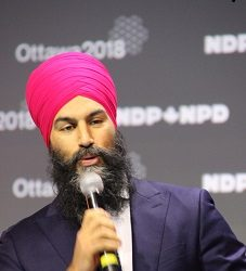 The NDP Policy Convention
