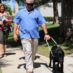 Guide Dogs of America: Changing the Lives of Sight-Impaired People Across Canada and the US.