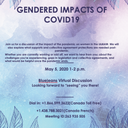 GENDERED IMPACTS OF COVID19 - Virtual Discussion